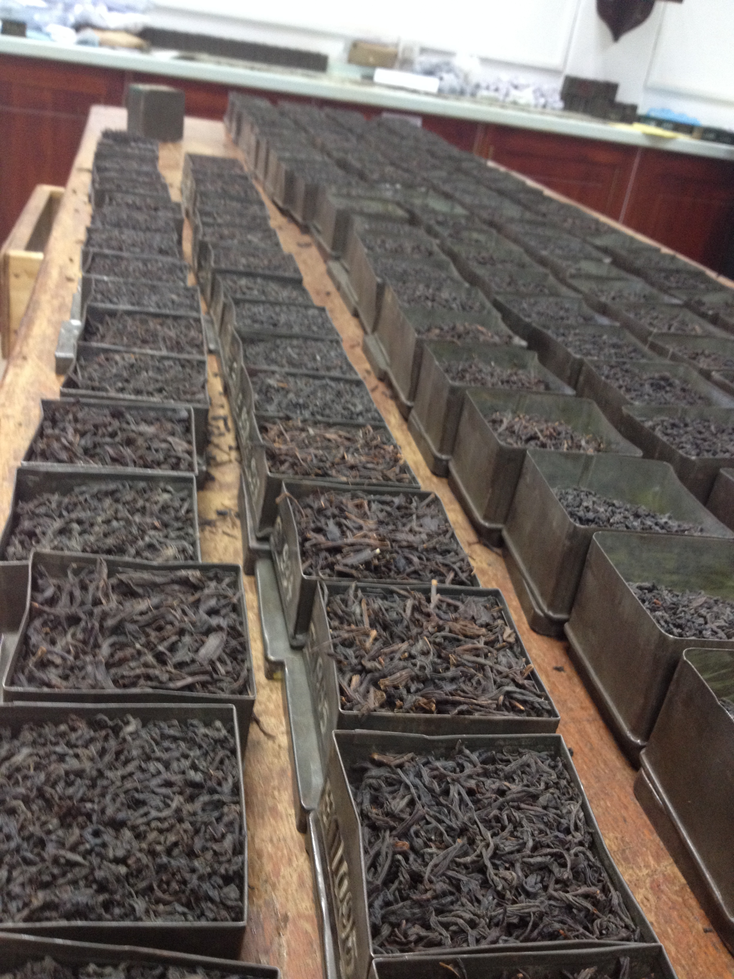 Black Loose Leaf Tea, whole leaf tea, black tea, black wholeleaf tea, black tea estate, black tea R&D, research black tea